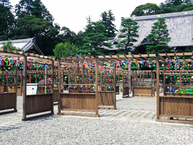 furin festival japan