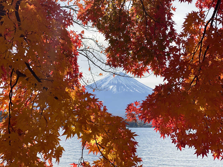 jesień fuji japonia